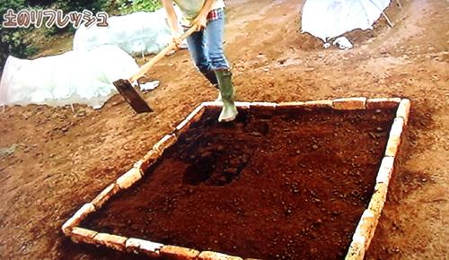 畑の土の作り方